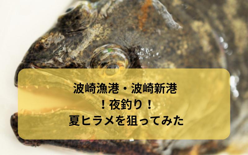 【2018年8月】波崎漁港・波崎新港 夜釣りで夏ヒラメを狙う