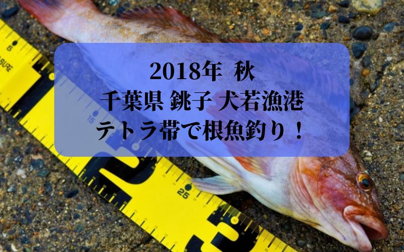 【2018年9月】千葉県 銚子市 犬若漁港のテトラ帯でルアー  アイナメ、クロソイ、メバル釣り