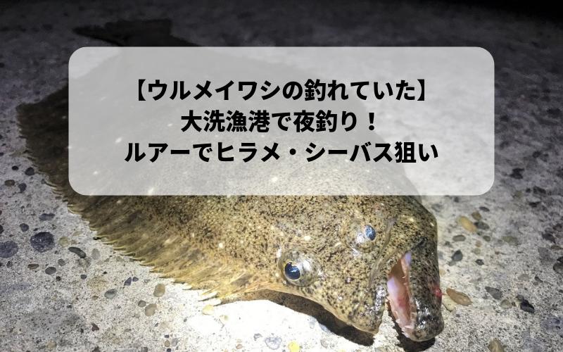 【2018年11月】茨城県 大洗港で釣り 電気ウキでメバル ルアーでヒラメ・シーバス狙い