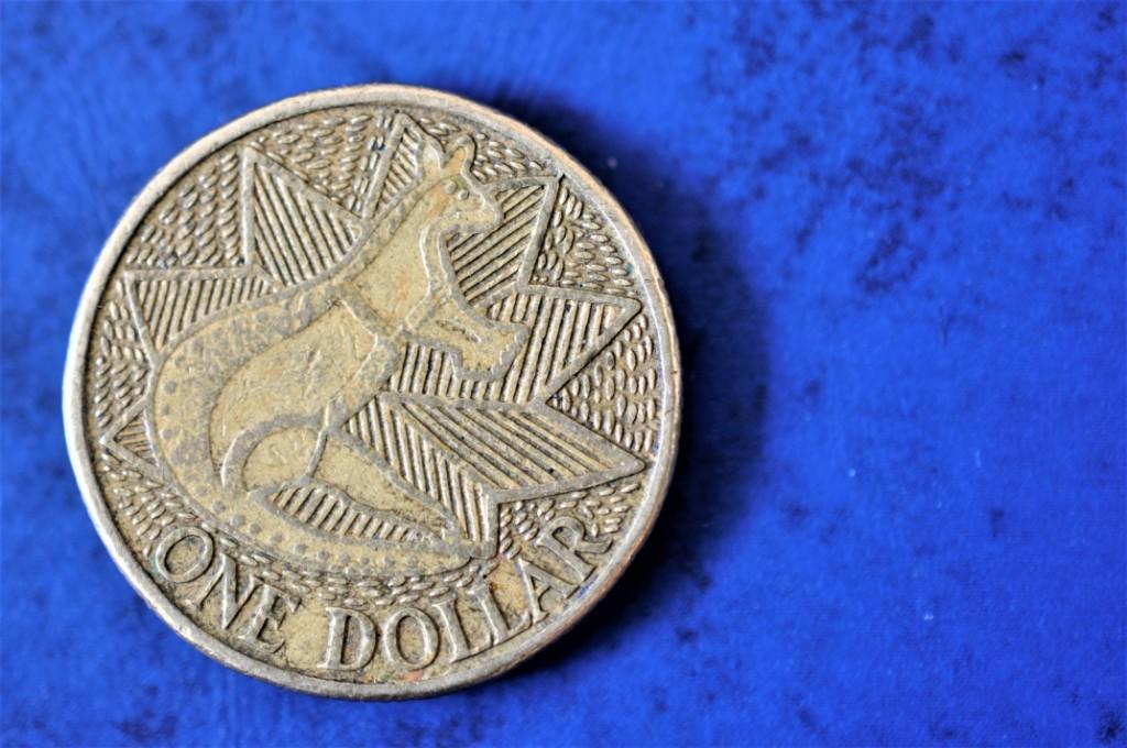 【何種類あるの?】オーストラリアの1ドルコインの種類が半端なく多かったので集めてみた