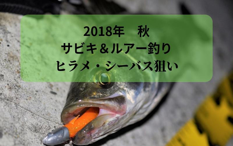 【2018年 秋】平潟漁港で釣り サビキでアジ・サバ  ルアーでヒラメ・シーバス狙い