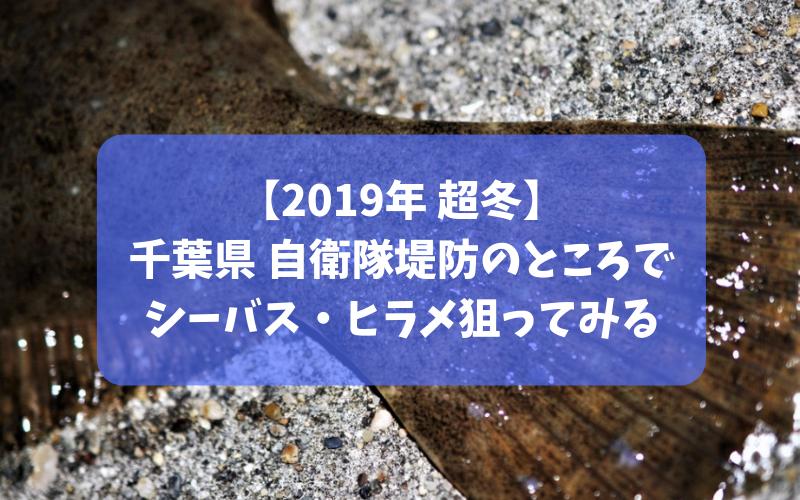 【2019年冬】千葉県 館山市の自衛隊堤防でルアー釣り シーバス・ヒラメ・クロダイ狙い