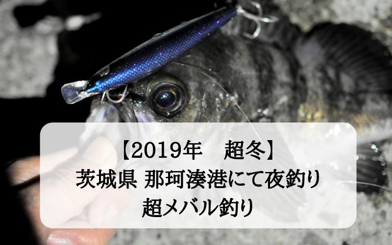 【極寒でも】2019年真冬 那珂湊港で夜釣り ルアーで狙うヒラメ・メバル・シーバス【大メバル】