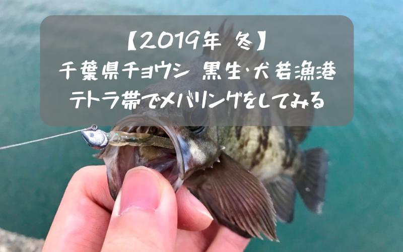 【2019年 冬】銚子 黒生漁港と犬若漁港のテトラで穴釣り メバル・クロダイ狙い