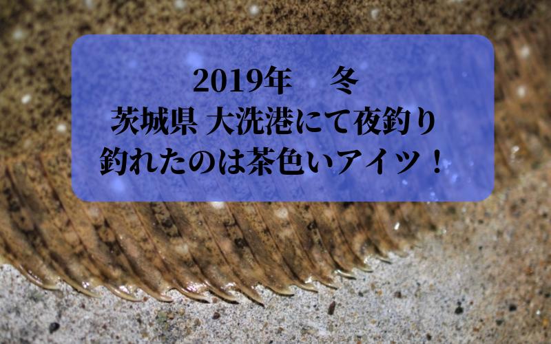 【2019年 冬】茨城県 大洗港で夜釣り 餌・ルアーの二刀流でシーバス・ヒラメ・メバル・アジ狙い