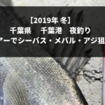 【2019年 冬】千葉県千葉港で夜釣り シーバス・メバル・アジ狙い