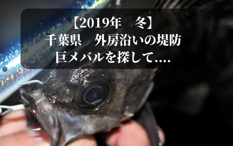 【2019年 冬】千葉外房で釣り メバル・シーバス・ヒラメ狙い