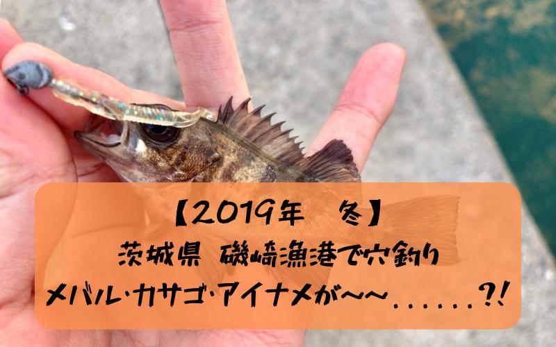 【2019年冬】茨城県 磯崎港で穴釣り&夜釣り メバル・カサゴ・アイナメ狙い