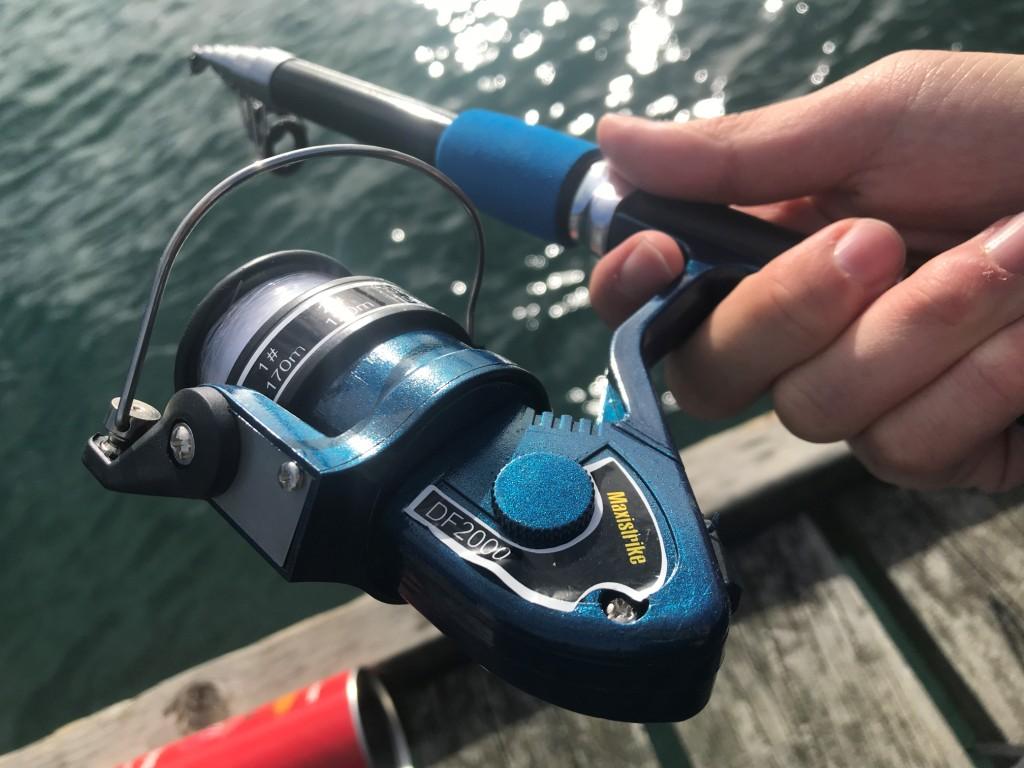 【2019年 ウェリントン 釣り記】シティ付近のHATAITAIで海釣りをしてきた