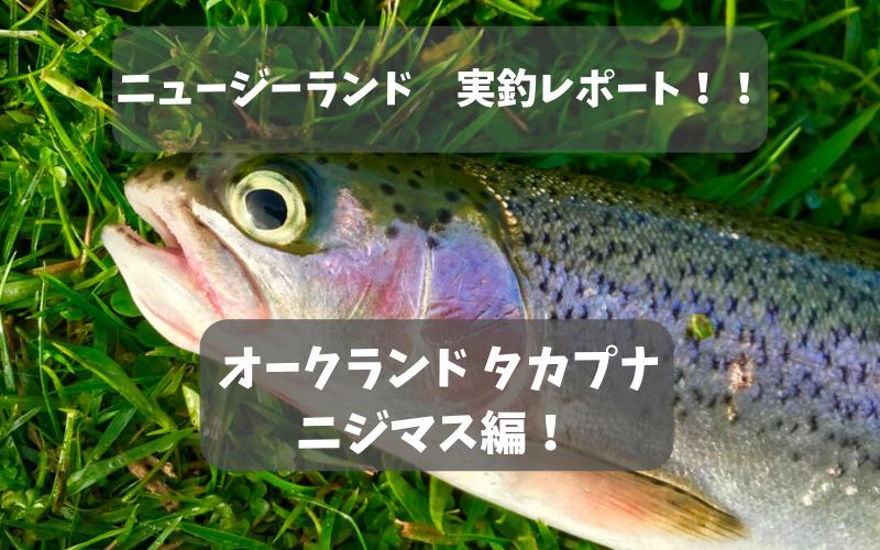 【ニュージーランド トラウト釣り】普通の湖・川でニジマスが爆釣だった話【オークランド】