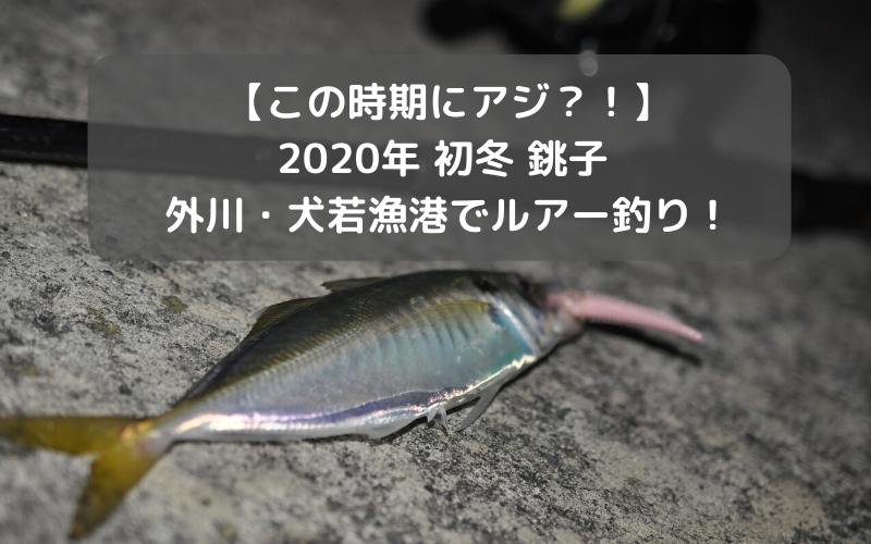【この時期にアジ?!】2020年初冬 外川・犬若漁港でルアー釣り!茶色のあの魚も、、