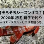 【そろそろ限界?】2020年 初冬 銚子で釣り 【シーバス・メバル・ヒラメを狙うも、、】