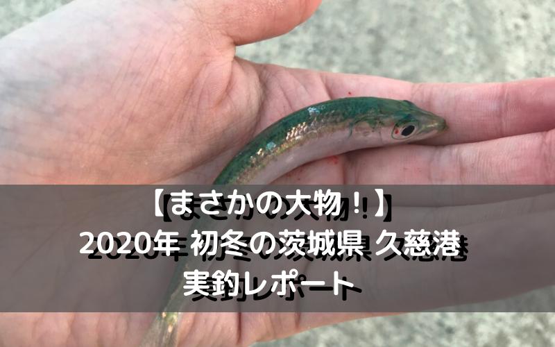 【まさかの大物!】2020年 初冬の茨城県 久慈港での実釣レポート