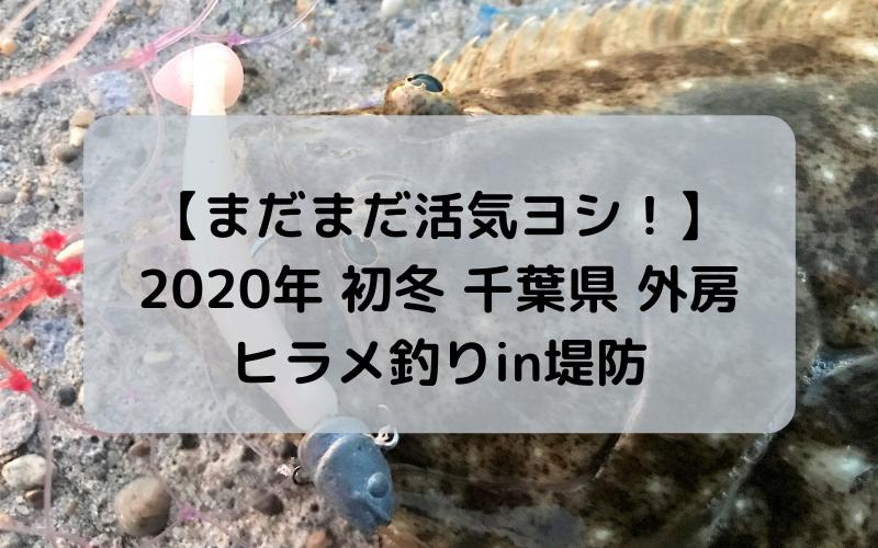 【こんな時期でも まだまだ活気ヨシ!】2020年 初冬 千葉県は外房でヒラメ釣りin堤防