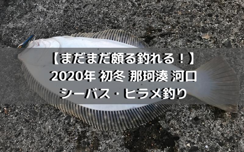 【まだまだ頗る釣れる!】2020年 初冬 那珂川 河口でシーバス・ヒラメ釣り