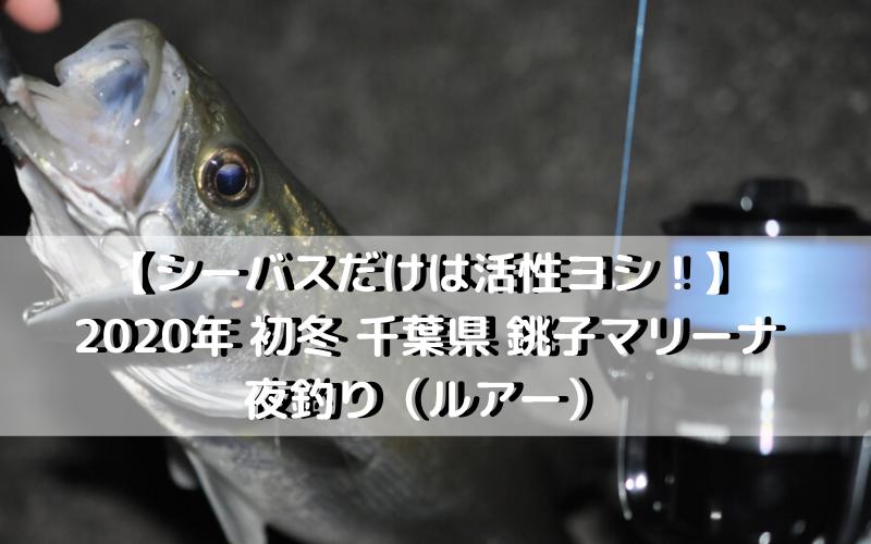 【シーバスだけは活性ヨシ!】2020年 初冬 千葉県 銚子マリーナで夜釣り(ルアー)