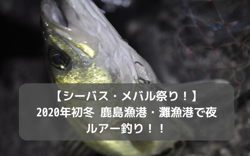【シーバス・メバル祭り!】2020年初冬 鹿島漁港・灘漁港で夜ルアー釣り!!