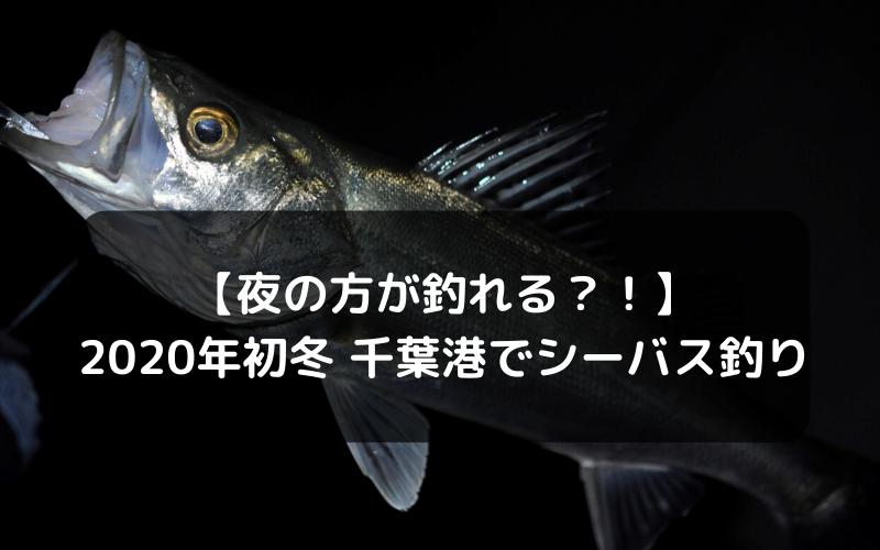 【夜の方が釣れる?!】2020年初冬 千葉港でシーバス釣り