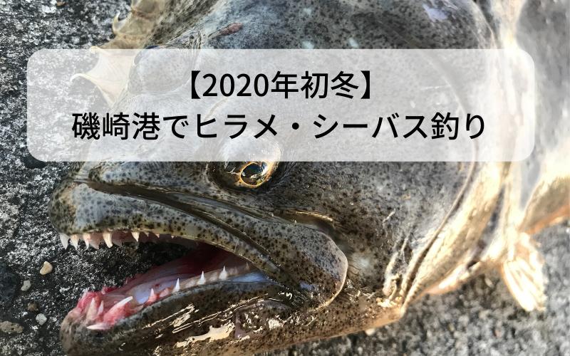 【2020年初冬】磯崎港で青物・メバルを狙わずにヒラメ・シーバス釣り【1月】