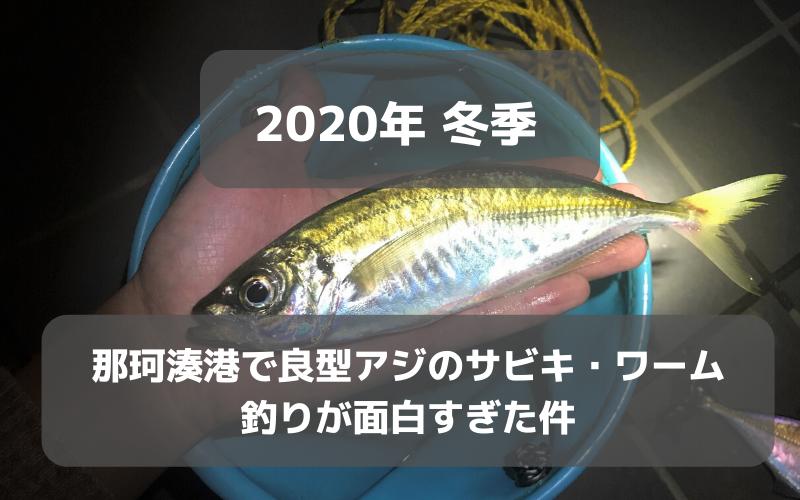 【2020年初冬】那珂湊港で良型アジのサビキ・ワーム釣りが楽しすぎた