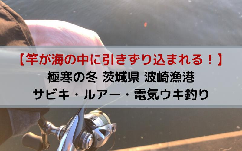 【竿が海の中に引きずり込まれる】極寒の冬 茨城県 波崎漁港でサビキ・ルアー・電気ウキ釣り